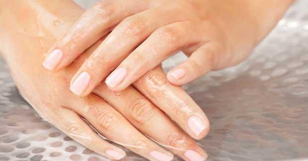 Fingernagel Aufbau